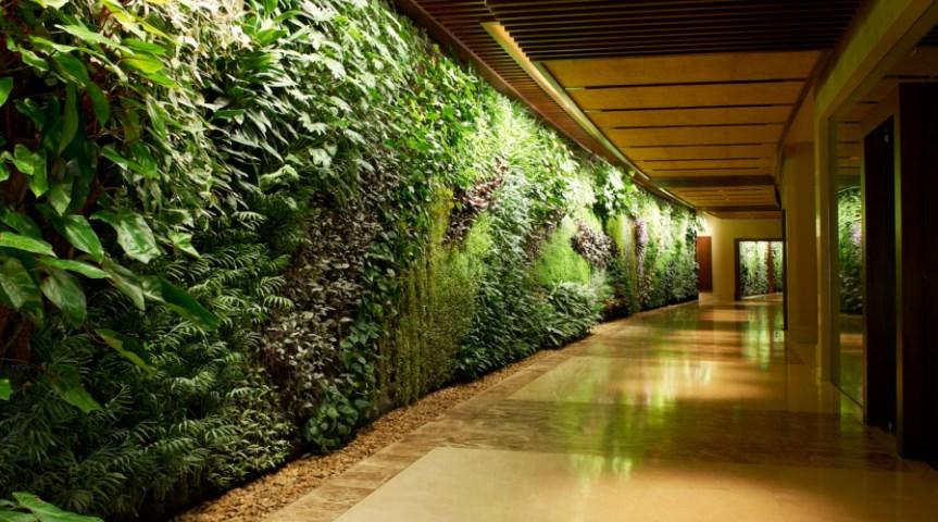 Merancang Vertical Garden yang Enak Dipandang